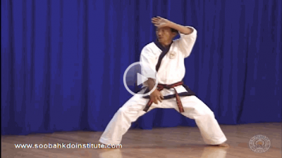 The Soo Bahk Do Institute Fast Forwards And Rewinds Videos